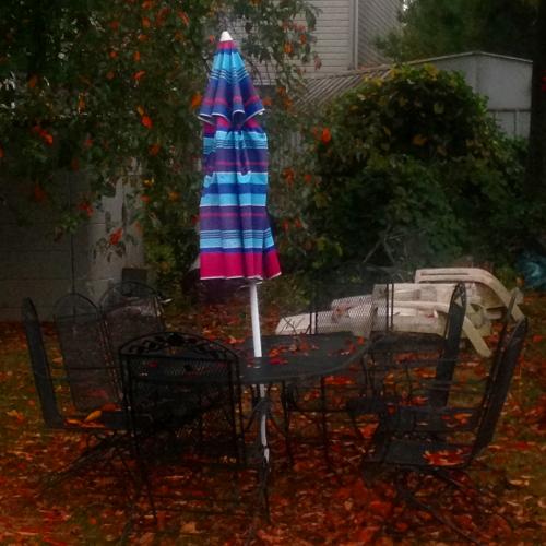 Autumn Dimming Brightness