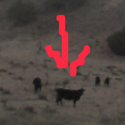 ARRIVAL: Cow Markers